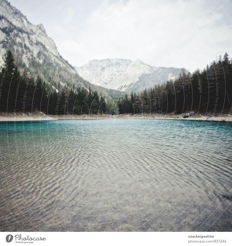 grün, grüner, am grünen see Umwelt Natur Landschaft Urelemente Erde Wasser Himmel Wolken schlechtes Wetter Wald Felsen Berge u. Gebirge Wellen Seeufer
