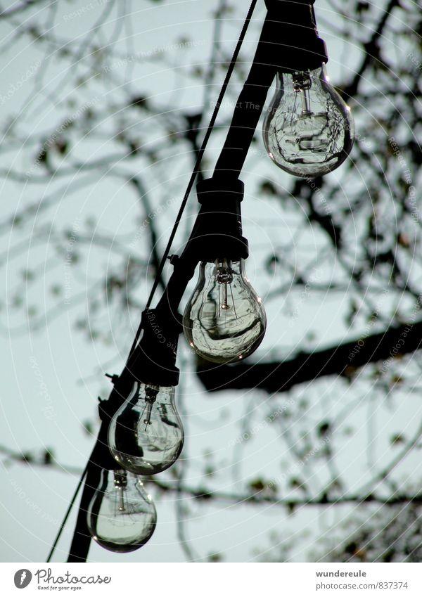 leuchtmittel Lampe Natur Luft Baum hängen Kabel Reflexion & Spiegelung Beleuchtung Elektrizität Farbfoto Schwarzweißfoto Außenaufnahme Menschenleer Tag Licht