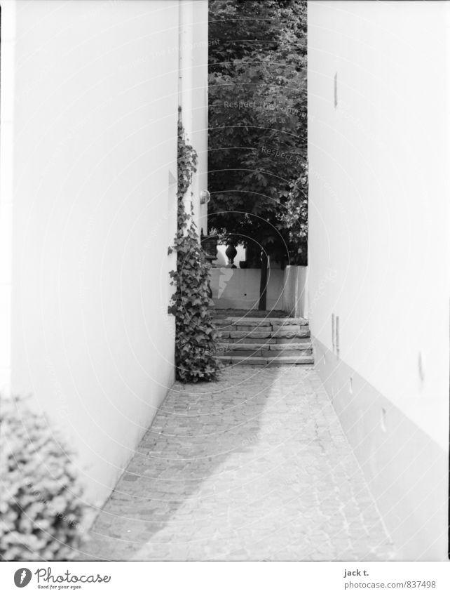 Schattiges Plätzchen Hafenstadt bevölkert Haus Mauer Wand Treppe Stein Stimmung Flur Schwarzweißfoto Außenaufnahme Tag Sonnenlicht
