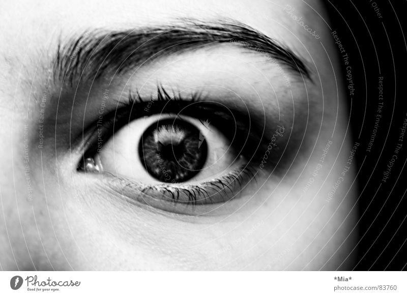 Buh! Schrecken Blick Pupille schwarz dunkel Frau Angst Panik Gesicht Schatten Regenbogenhaut Schwarzweißfoto Momentaufnahme Wimpern