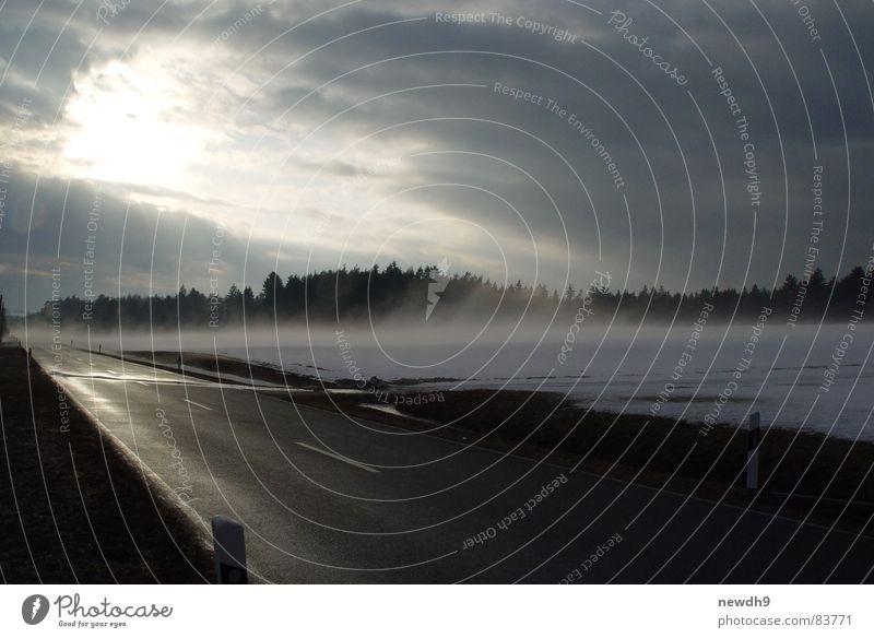Nebel des Grauens Oberpfalz Landstraße Franken nass kalt Wiese Wald Nebelschleier Winter Straße Waldlichtung Ferne sonnenlos feucht Eis Straßenleitpfosten Sonne