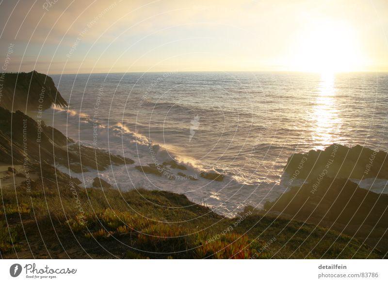 der tag am meer Himmel Wasser grün Meer Strand Wiese Gras Küste Sand See Horizont Felsen Wellen Rasen Weide Stranddüne