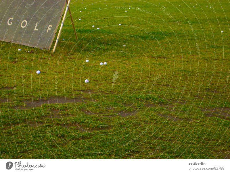 Golffoto grün Wiese Gras Sport Spielen Erde Hinweisschild Landwirtschaft Weide Dorf Ball Sportrasen Grundbesitz Ackerbau Grasnarbe