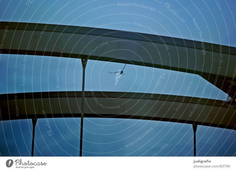 Kanalbrücke II Konstruktion Hannover Mittellandkanal Vogel Möwe Stahl Geometrie Brückenpfeiler Himmel Geländer Bahnübergang Metall Baustelle