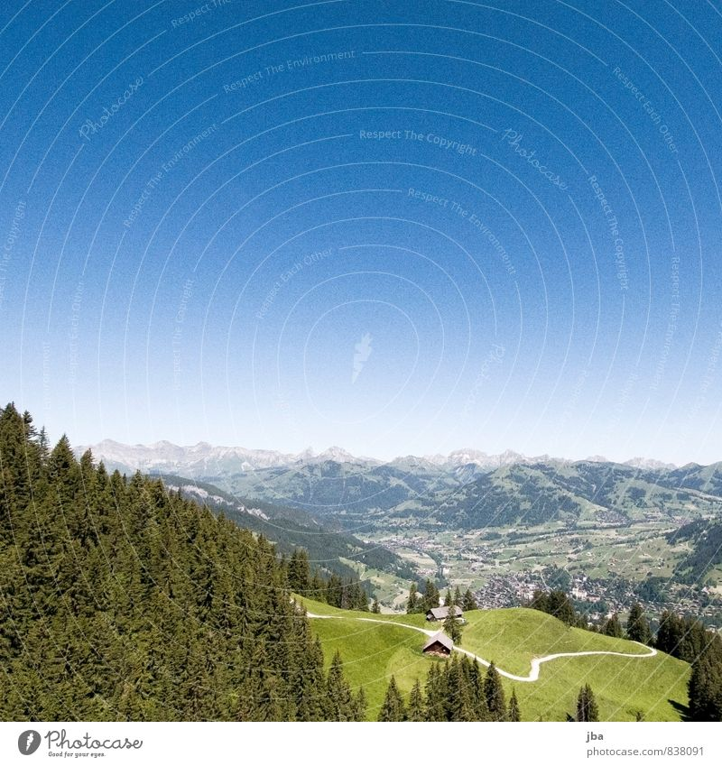 hinterm Berg Natur blau Sommer Erholung ruhig Landschaft Wald Berge u. Gebirge Wege & Pfade natürlich fliegen Luft wandern Schönes Wetter Fußweg Alpen