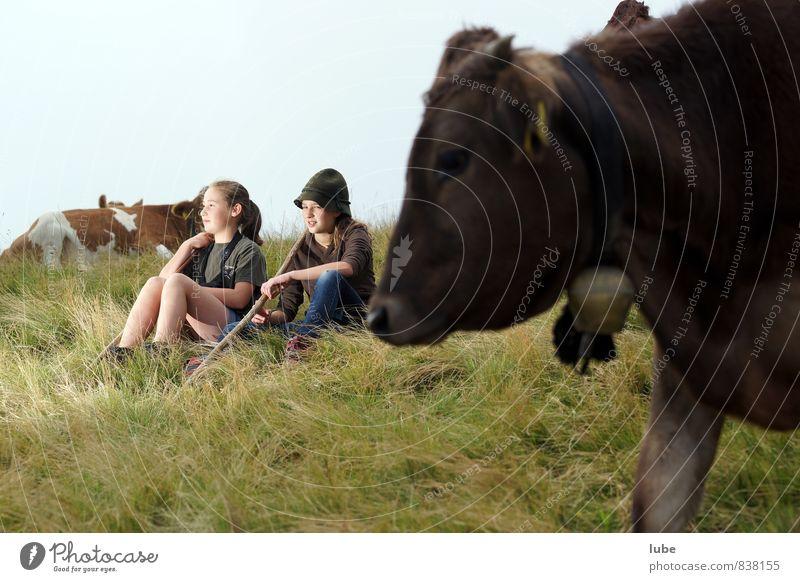Hirtamadl Mensch Kind Natur Jugendliche Sommer ruhig Landschaft Wolken Mädchen Tier Umwelt Berge u. Gebirge feminin 13-18 Jahre beobachten Landwirtschaft