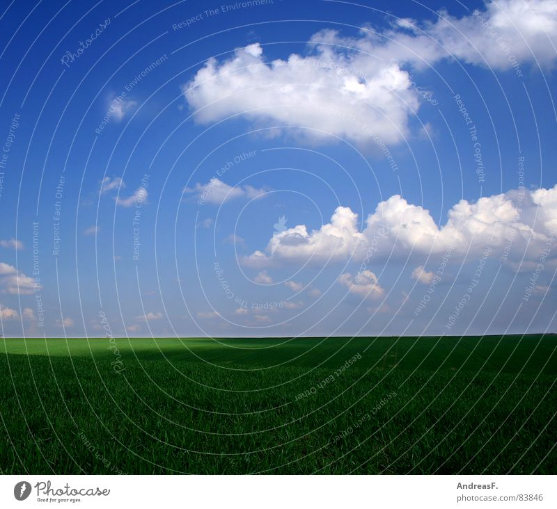 winter ist doof. Himmel Natur grün schön Sommer Sonne Landschaft Wolken Ferne Wärme Frühling Wiese Gras Freiheit Horizont Wetter