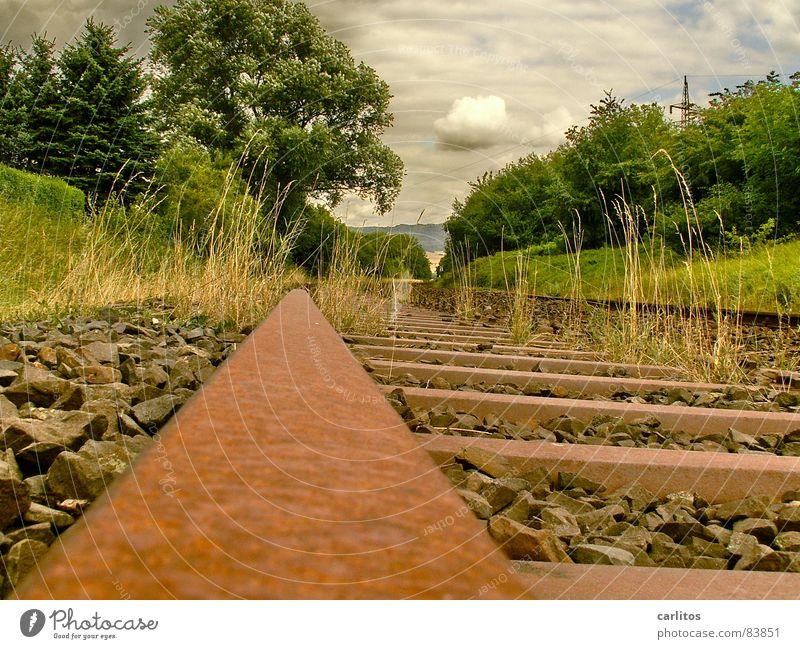 es fährt kein Zug nach nirgendwo Himmel Natur Wolken Umwelt Landschaft Eisenbahn Sträucher Vergänglichkeit Gleise Rost Kurve Bahnhof Kies Neigung Recycling