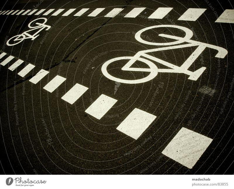FAHRPLAN Fahrrad Fahrradweg Lee Pedal Tandem Standard fahren Bewegung Verkehr grau Asphalt Ikon Piktogramm Mobilität Stadt Quadrat graphisch Fahrplan Gasse