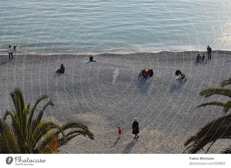 sonntagmorgenamstrand Meer Freizeit & Hobby Italien Palme Sonntag Ligurien Steinstrand Santa Margherita Ligure