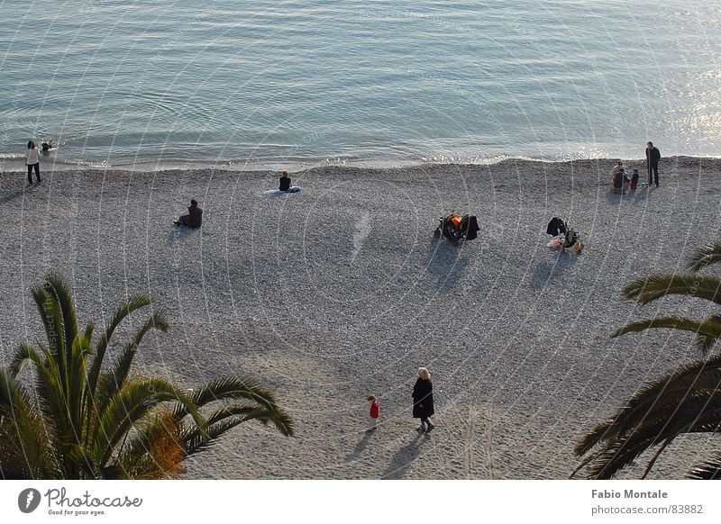 sonntagmorgenamstrand Santa Margherita Ligure Italien Steinstrand Ligurien Palme Meer Sonntag Freizeit & Hobby Winterstrand