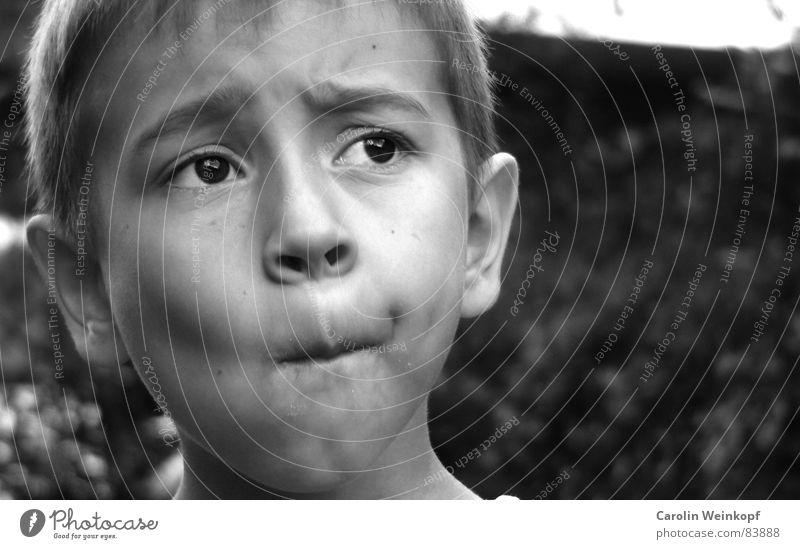 Zwischenzahnprobleme. Junge Segelohr Stirn Stirnfalte Ferne Sehnsucht klein süß aufreizend Kind Kinn kleiner junge Ohr Haare & Frisuren Auge grübchen Falte