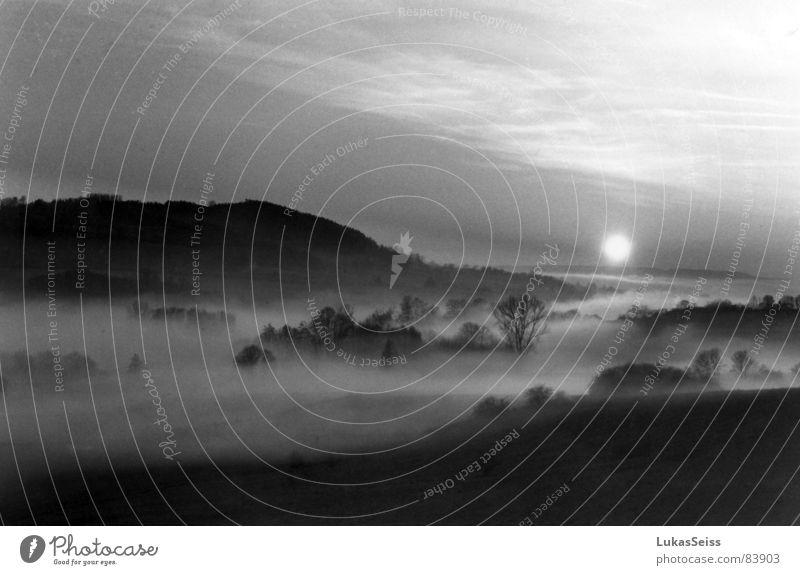Caspar David Friedrich auf dem Dorfe Nebel Romantik Sonnenuntergang Herbst Stimmung Abend Naturphänomene Landschaft Schwarzweißfoto Abenddämmerung