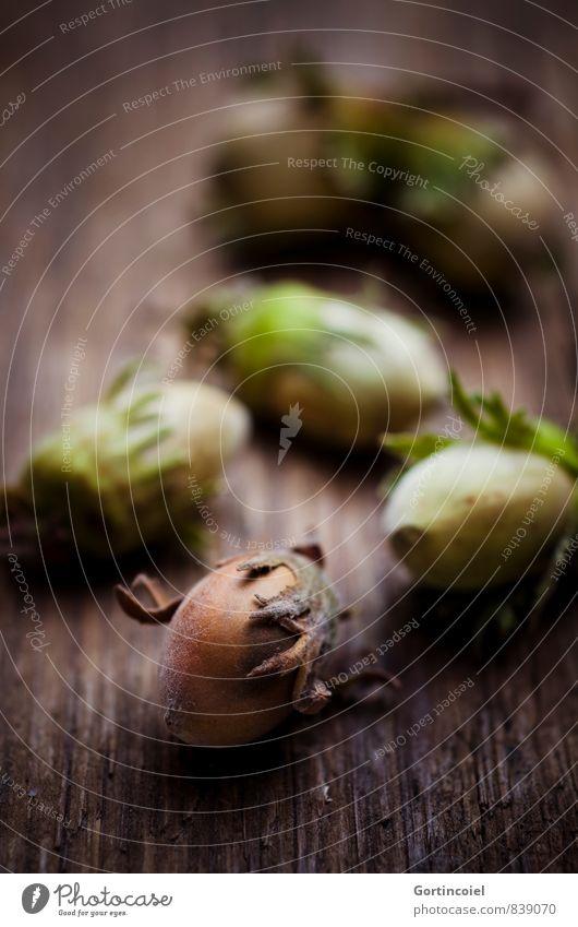Haselfrüchte Herbst braun Haselnuss Nuss haselnussbraun herbstlich Ernte Erntedankfest Weihnachten & Advent Farbfoto Innenaufnahme Studioaufnahme Nahaufnahme