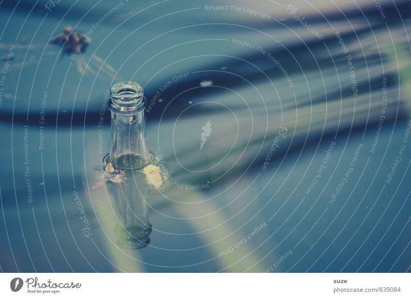 Sie haben Post ... Erfrischungsgetränk Alkohol Bier Flasche ruhig Schwimmen & Baden Freizeit & Hobby Umwelt Natur Wasser Teich See authentisch kalt blau Sucht