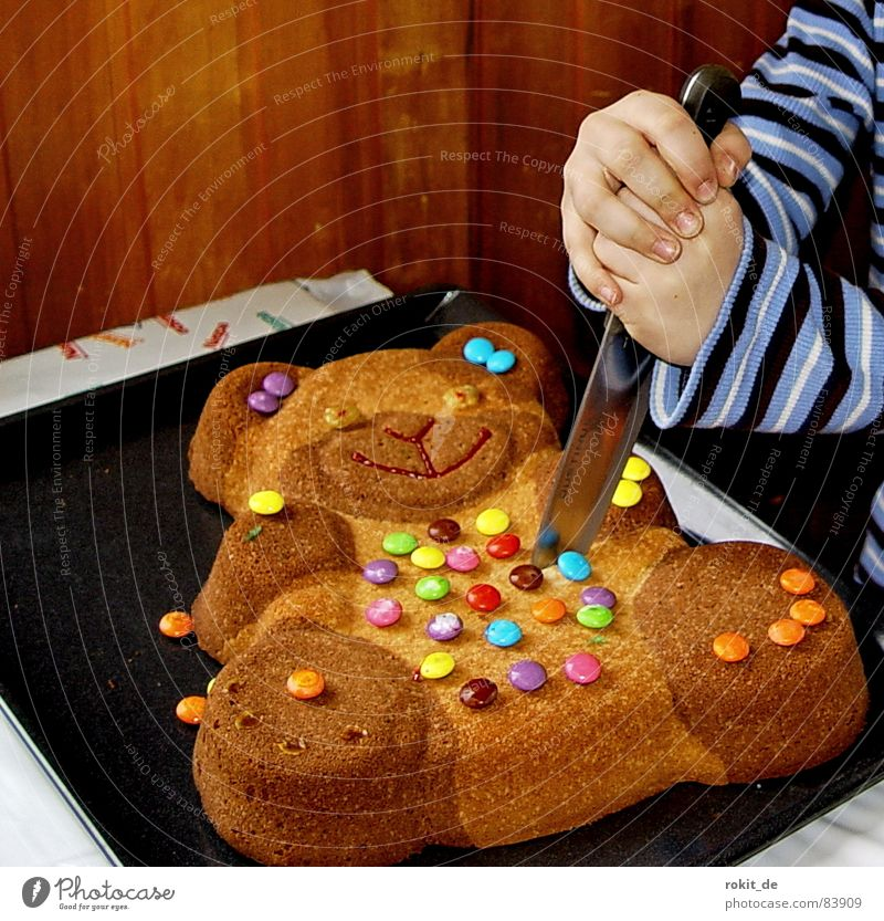So starb Bär Bruno wirklich Kind Hand Essen Geburtstag Ernährung Finger Jubiläum Kuchen Messer Mensch Backwaren Blech geschnitten Bär stechen töten
