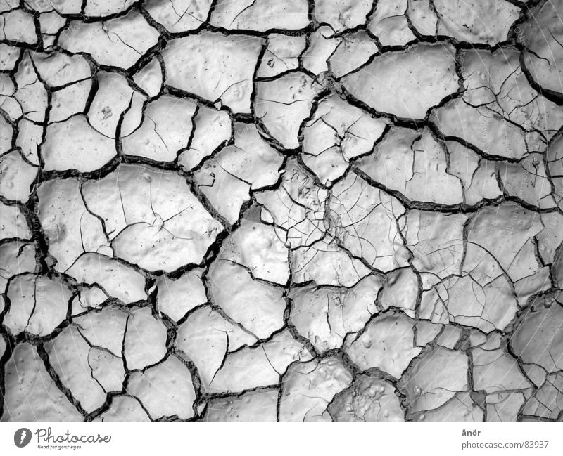 trockene erde Muster heiß grau Dürre Wüste Schwarzweißfoto Erde Riss Bodenbelag dünn nicht feucht sehr warm