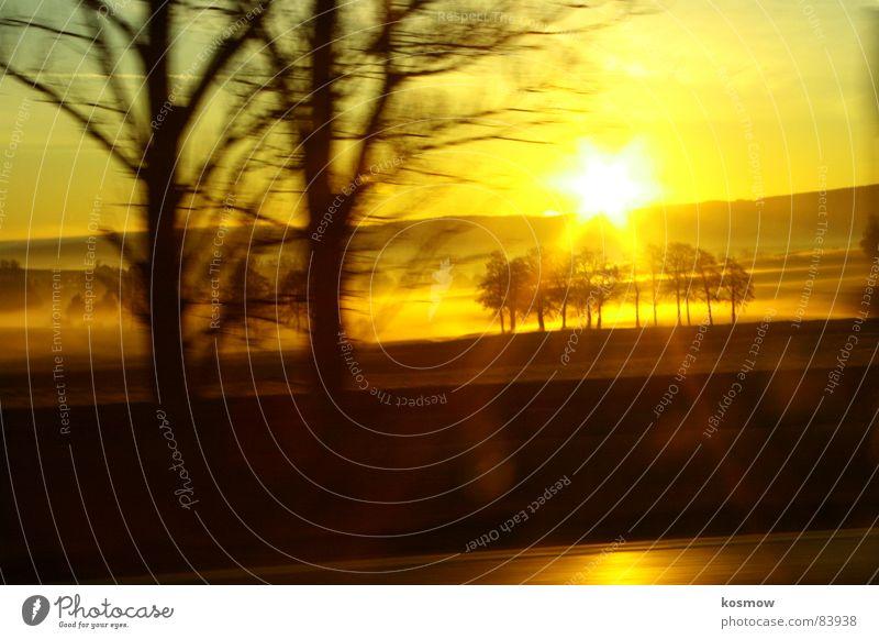 A9 Highway Tales Sonnenaufgang Nebel Baum Autobahn Sonnenstrahlen Morgen Nebelschleier orange Ferne Schleier Schnellstraße Morgendämmerung