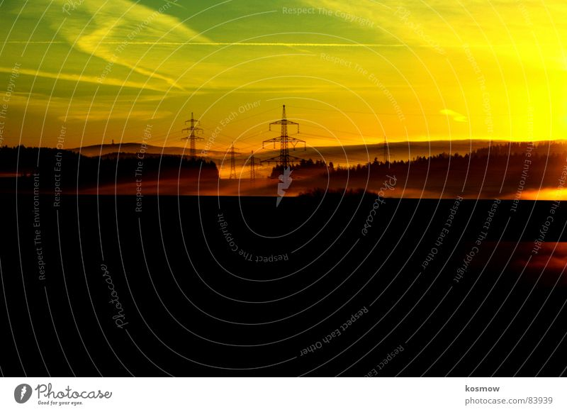 Morgenstund' hat Gold im Mund Himmel Baum Wald orange Nebel