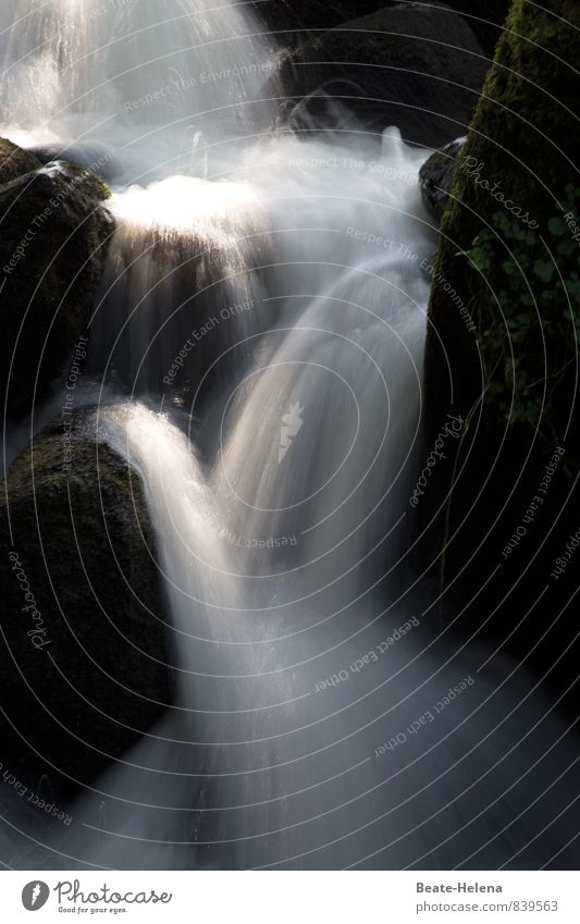 Feuchtigkeit | erfrischt die Haut Sommer Natur Landschaft Wasserfall Triberger Wasserfälle Schwarzwald Sehenswürdigkeit Stein beobachten entdecken fallen