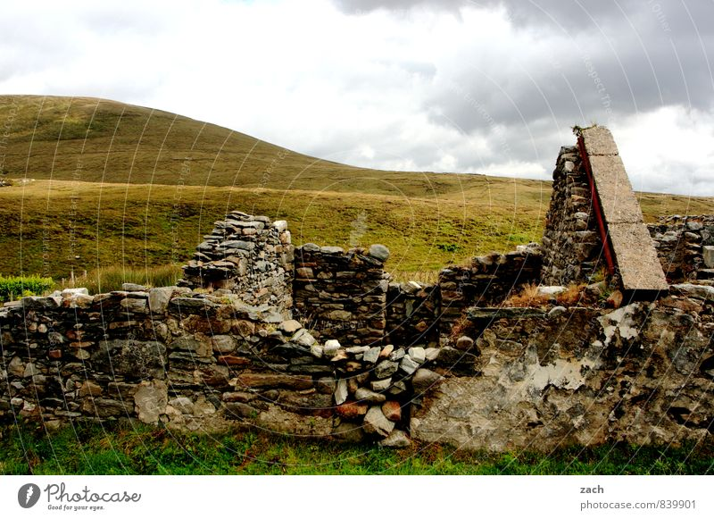 Geduld | auf den Dachdecker warten alt Haus Häusliches Leben kaputt Vergänglichkeit Dach Verfall Ruine Republik Irland Natursteinhaus