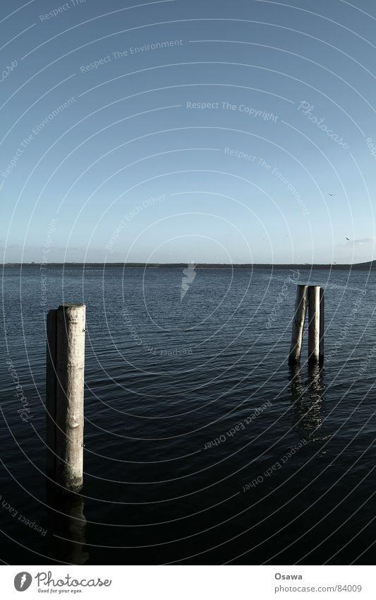 Müggelsee Wasser Himmel kalt Holz See Horizont Seeufer Baumstamm Stab Ständer Himmelszelt Firmament Wasserstraße Wasserstand Binnensee Großer Müggelsee