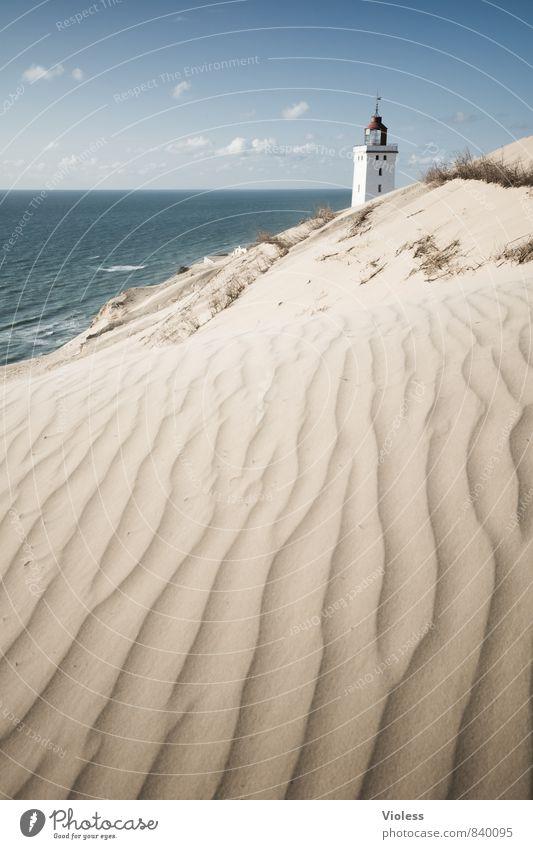 sandman II Ferien & Urlaub & Reisen Sommer Sonne Strand Meer Wellen Küste Bucht Nordsee entdecken Erholung Stranddüne Düne Rubjerg Wanderdüne Rubjerg Knude