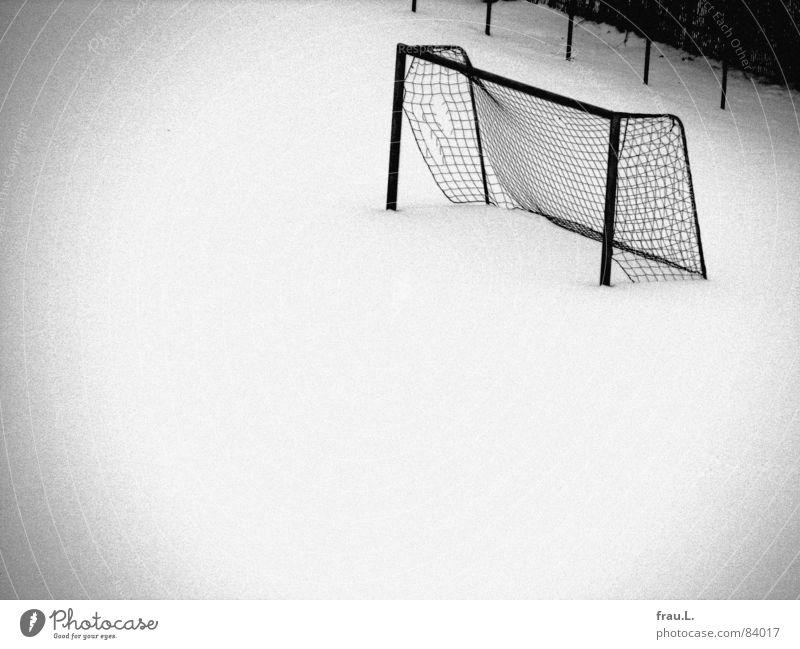 Tor im Schnee Einsamkeit kalt Sport Freizeit & Hobby Fußball leer kaputt Sträucher Zaun treten Ballsport Neuschnee Schneedecke körnig