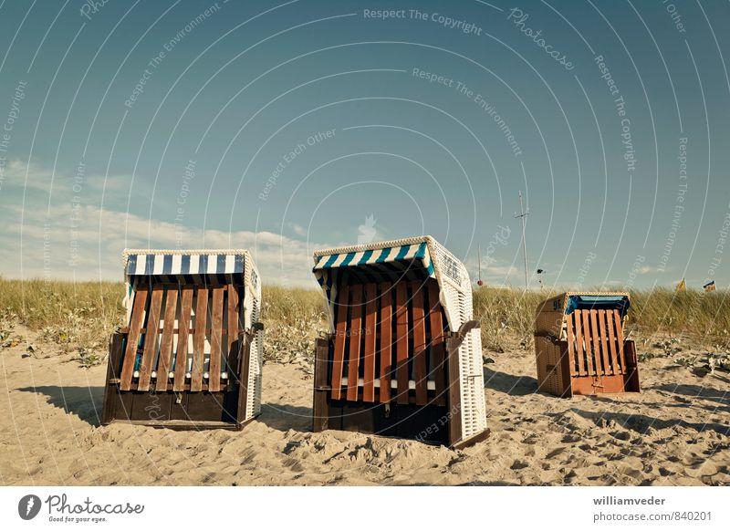 Strandkörbe am Dünenrand Himmel Natur Ferien & Urlaub & Reisen Sommer Sonne Meer Erholung Landschaft Umwelt Wärme Schwimmen & Baden Freiheit Gesundheit Sand