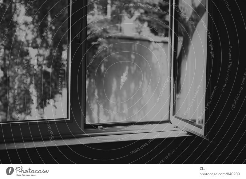fenster zum hof Häusliches Leben Wohnung Raum Natur Baum Garten Mauer Wand Fenster dunkel lüften Fensterscheibe Fensterblick aufmachen Luft Schwarzweißfoto