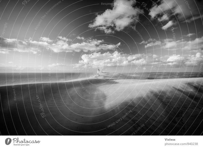 sandstorm Ferien & Urlaub & Reisen Tourismus Ausflug Abenteuer Sommer Sommerurlaub Strand Umwelt Natur Landschaft Urelemente Sand Sturm Wellen Küste Nordsee