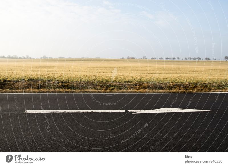 richtungsweisend Himmel Stadt Landschaft Straße Wege & Pfade Horizont Feld Verkehr Beginn Wolkenloser Himmel Pfeile Richtung Verkehrswege vorwärts