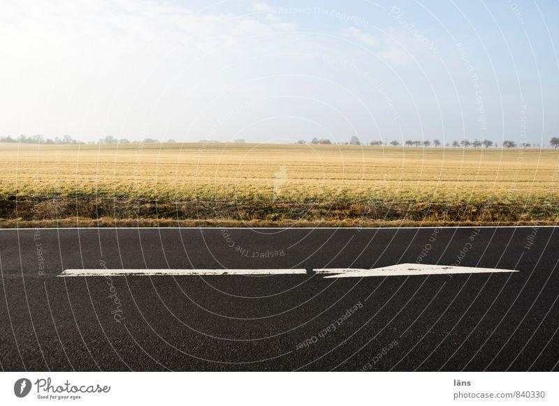 richtungsweisend Landschaft Himmel Wolkenloser Himmel Horizont Feld Verkehr Verkehrswege Straßenverkehr Wege & Pfade Beginn Stadt vorwärts Pfeile