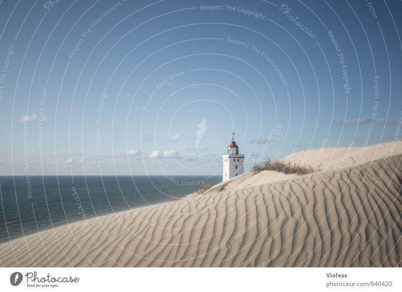 sandmann ... Ferien & Urlaub & Reisen Sommer Sonne Strand Meer Wellen Küste Bucht Nordsee entdecken Erholung Stranddüne Düne Rubjerg Wanderdüne Rubjerg Knude