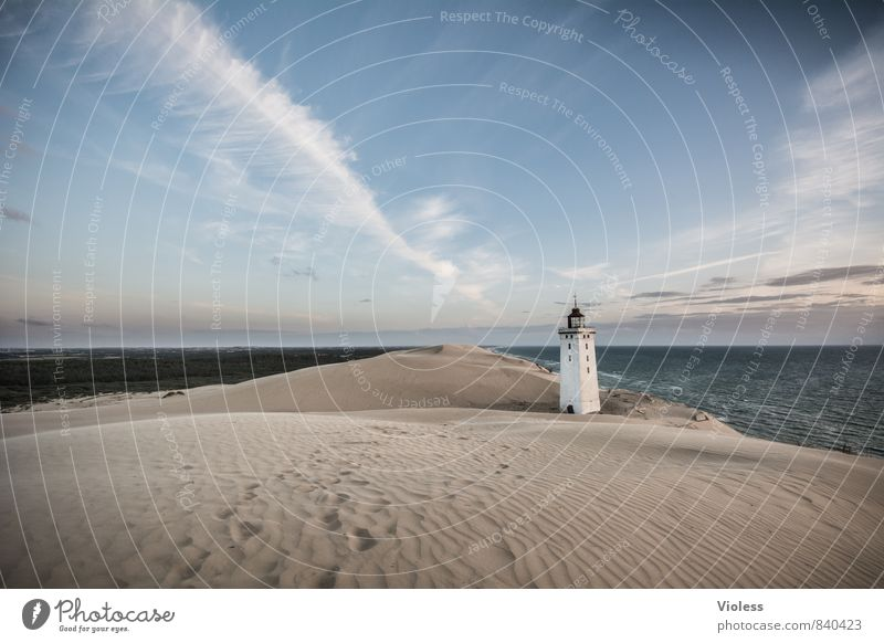 Sandman IV Ferien & Urlaub & Reisen Sommer Sonne Strand Meer Wellen Küste Bucht Nordsee entdecken Erholung Stranddüne Düne Rubjerg Wanderdüne Rubjerg Knude