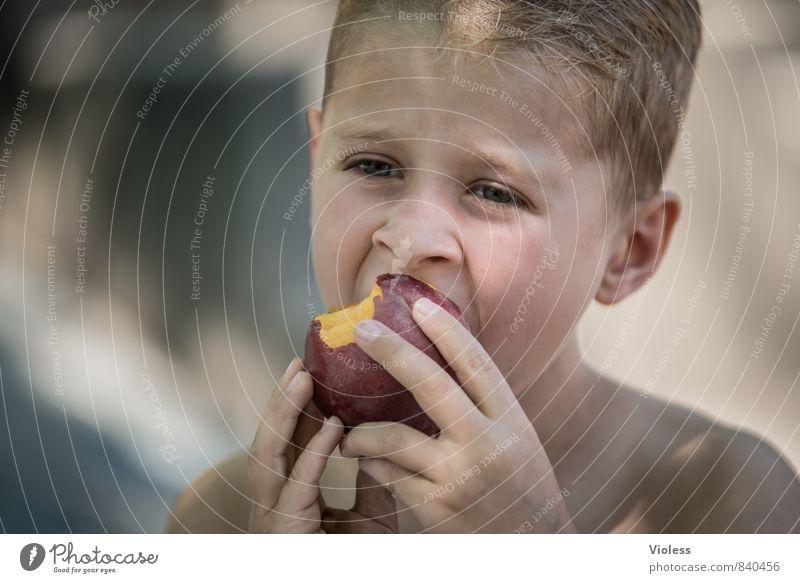 Vitamine ... Frucht Mensch maskulin Kind Junge Kindheit Gesicht 3-8 Jahre 8-13 Jahre Essen Gesundheit lecker saftig süß Pfirsich Porträt Blick nach vorn