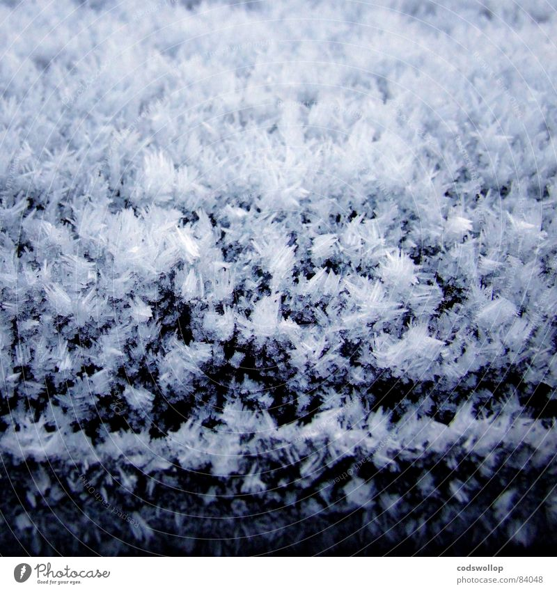 frost II Schnellzug kalt Eiskristall abstrakt Winter einfrierend Frost Raureif crystal abstract freezing weather Wetter cold freeze Schnee