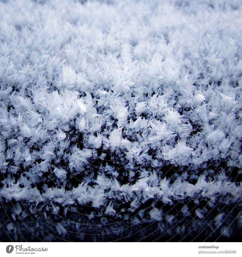 frost II Winter kalt Schnee Eis Wetter Frost Schnellzug Raureif Eiskristall