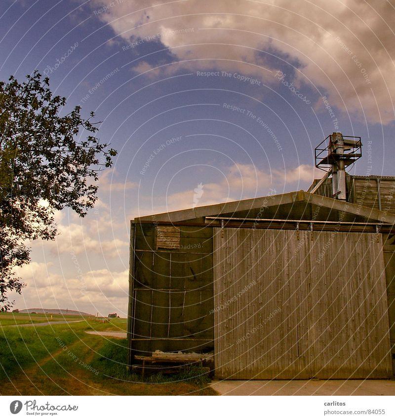 Feierabend Natur Sommer Herbst Arbeit & Erwerbstätigkeit Wärme Sträucher Physik Tor Ernte Fußweg Scheune fertig Dürre Klimawandel