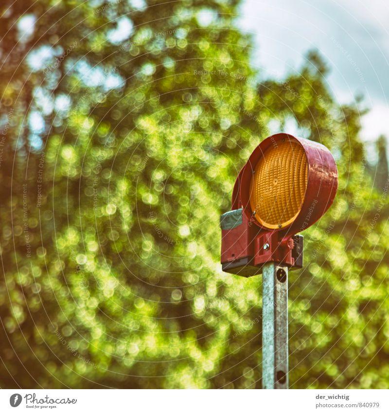 Achtung! Natur Pflanze Wolken Sommer Schönes Wetter Baum Verkehrsstau Verkehrszeichen Verkehrsschild Signalanlage Warnleuchte Warnsignal Metall Kunststoff eckig