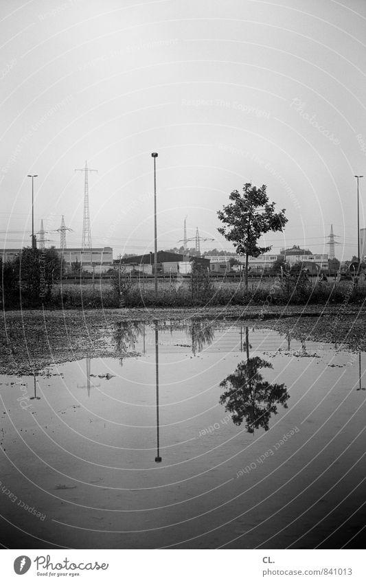 gewerbegebiet Industrie Umwelt Natur Landschaft Wasser Himmel Klima schlechtes Wetter Regen Baum Industrieanlage trist grau Pfütze Strommast Industriefotografie