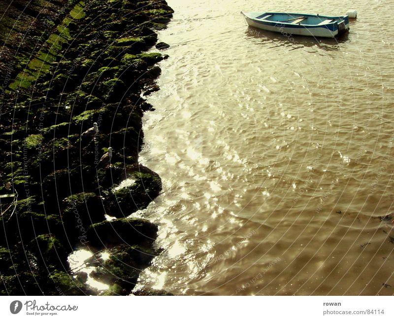 boot, ruhend  I Wasser alt Sonne Meer grün Strand ruhig Einsamkeit dunkel Erholung Holz Traurigkeit See Wärme Wasserfahrzeug braun
