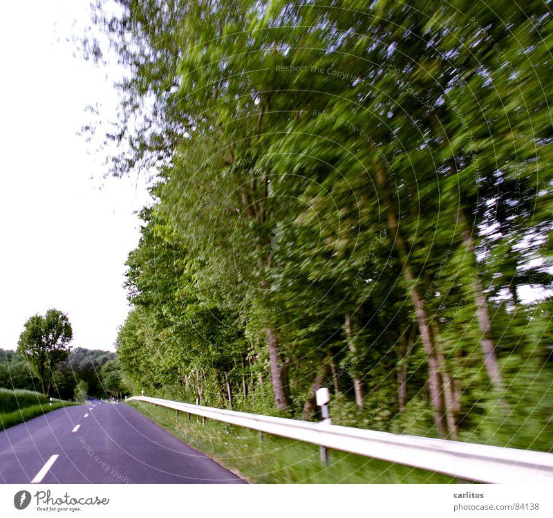 Links sind Bäume ... Straßenrand Landstraße Fahrbahnmarkierung Mittelstreifen Leitplanke Baum Sträucher Leitpfosten Geschwindigkeit Ferien & Urlaub & Reisen