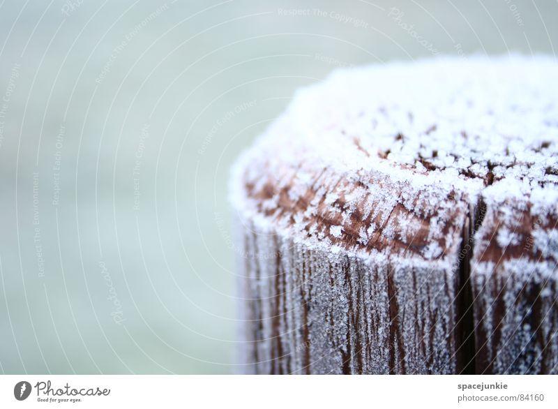 Zuckerguss kalt Jahreszeiten Holz Holzpfahl ländlich Winter Eis rustikal Makroaufnahme Nahaufnahme Schnee frostgefühl kältegefühl