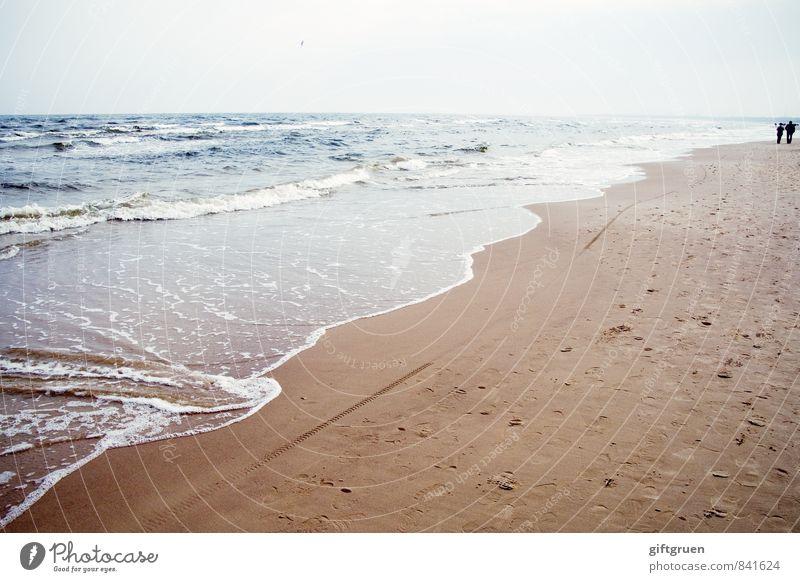 at the beach Umwelt Natur Landschaft Urelemente Sand Wasser Schönes Wetter Wellen Küste Strand gehen Strandspaziergang Spaziergang Ostsee Meer Gewässer