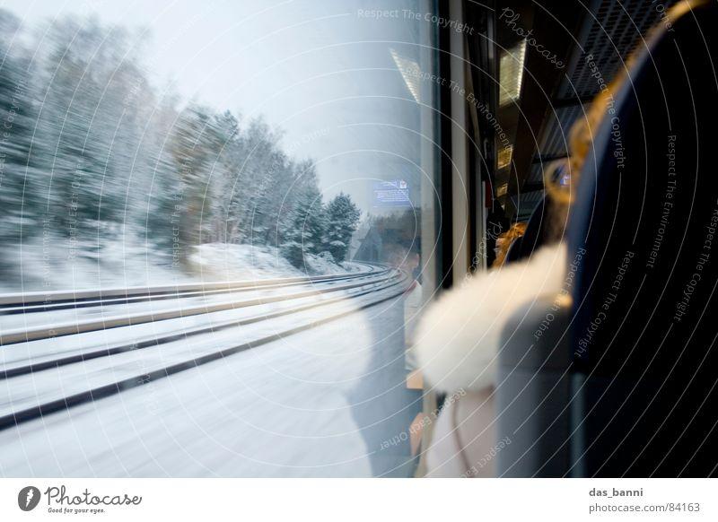 Bahn Impressionen Mensch Natur Baum Winter Ferien & Urlaub & Reisen Wald kalt Schnee Fenster Bewegung Wärme Eisenbahn Geschwindigkeit sitzen Ordnung fahren