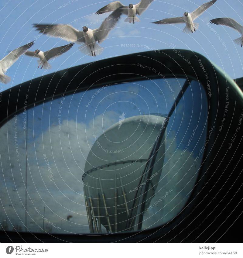 ikarus Rohstoffe & Kraftstoffe Vogel Rückspiegel Spiegel Energiewirtschaft Industriefotografie Arbeit & Erwerbstätigkeit Tier gasbehälter gaskessel Gas Himmel