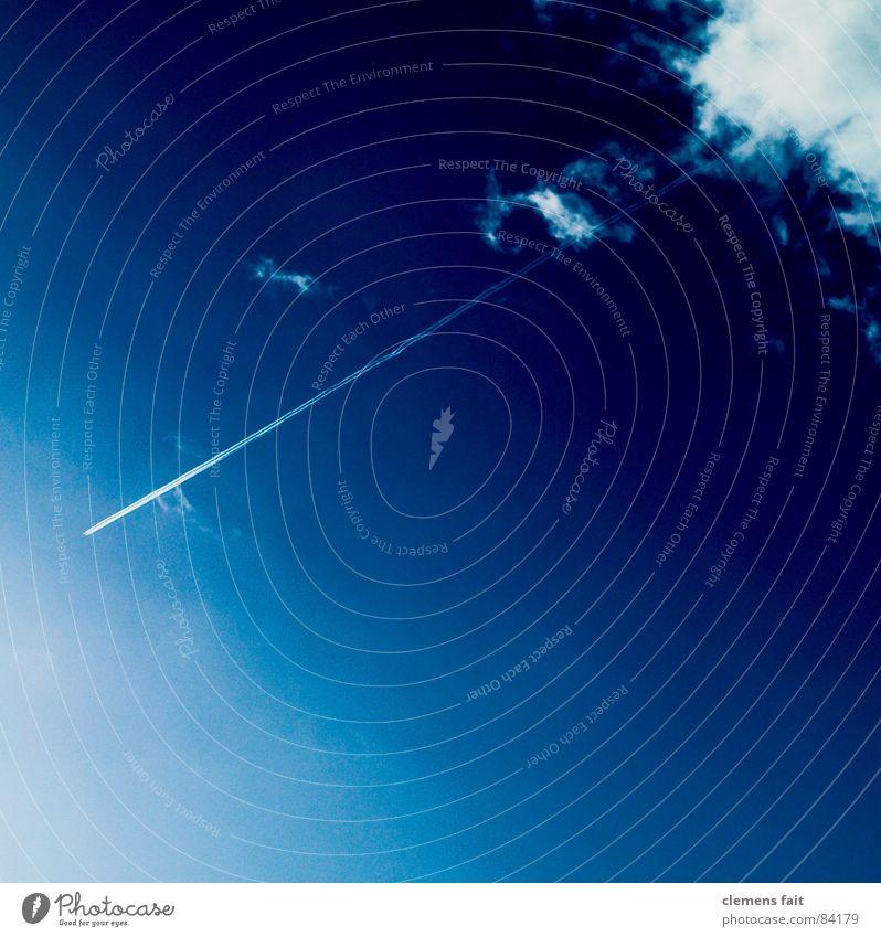 Die Flüchtenden Himmel blau Ferien & Urlaub & Reisen Wolken Ferne Flugzeug gehen fliegen Reinigen Dienstleistungsgewerbe Strahlung Schwanz Lücke nehmen strahlend loslassen