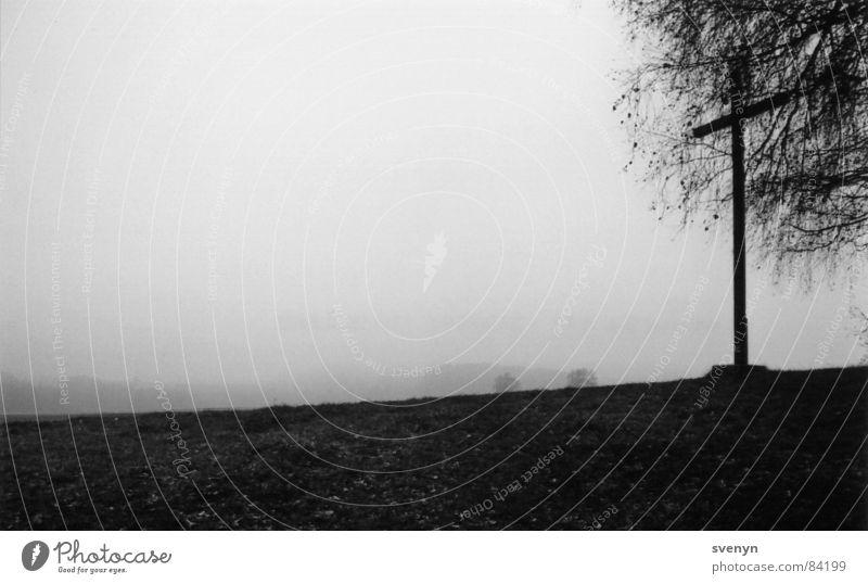 kreuzblick Nebel Hügel Baum Ferne Trauer Wiese dunkel Aussicht Nebelschleier Schleier ruhig Rücken Himmel Traurigkeit anhöhe Perspektive trübung Schwarzweißfoto