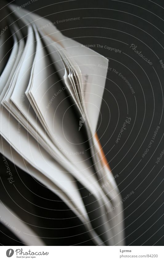 Lesestoff lesen Arbeit & Erwerbstätigkeit Business Zeitung Zeitschrift Papier Kommunizieren Mitteilung Text Farbfoto Innenaufnahme Detailaufnahme
